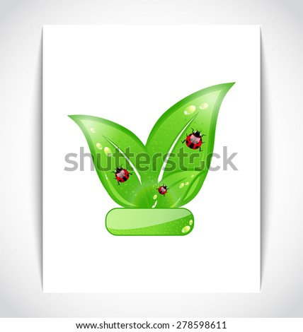 Illustration green eco leaves with ladybugs on the white paper - raster - stock photo