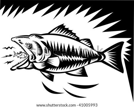 illustration of a big fish eating a small fish - stock photo