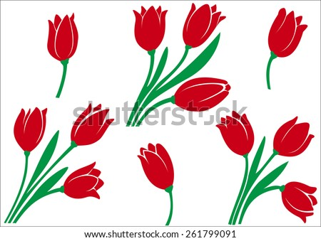 Illustration of a diverse set of tulips on a white background - stock photo