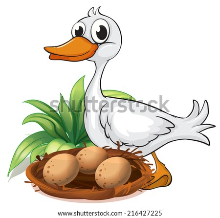 Illustration of a duck beside her nest on a white background - stock photo