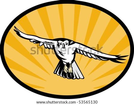 illustration of a goshawk bird swooping down - stock photo