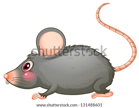 Illustration of a gray rat on a white background - stock photo
