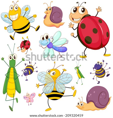 Illustration of a group of insects on a white background - stock photo