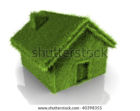 Illustration of a house covered in grass - 3d render