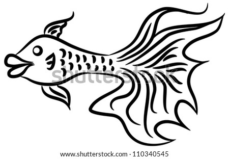 Fish Tail Drawings a Long Tail Fish on White