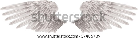 Illustration of a pair of outstretched beautiful white wings - stock photo
