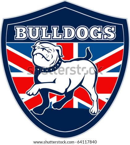 "illustration of a Proud English bulldog marching with Great Britain or British flag in background set inside a shield with words ""bulldogs"" suitable for any sports team mascot"
