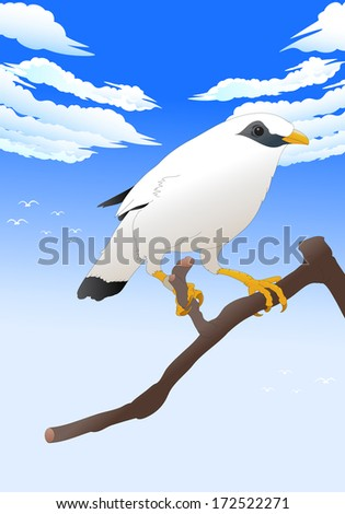 illustration of a rare white bird sitting on a branch in nature - stock photo