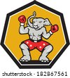 Illustration of a republican elephant mascot boxer boxing with gloves set inside shield pentagon shape done in cartoon style. - stock photo