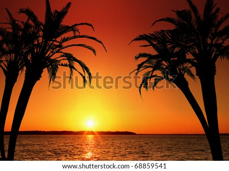 Illustration of a tropical island paradise. Perfect for vacation and destination concepts, and much more! - stock photo