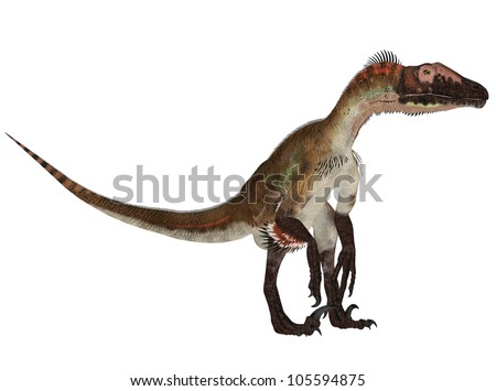 Illustration of a Utahraptor (dinosaur species) isolated on a white background