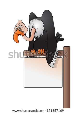 illustration of  a vulture bird perch on top of blank sign board on isolated white background - stock photo