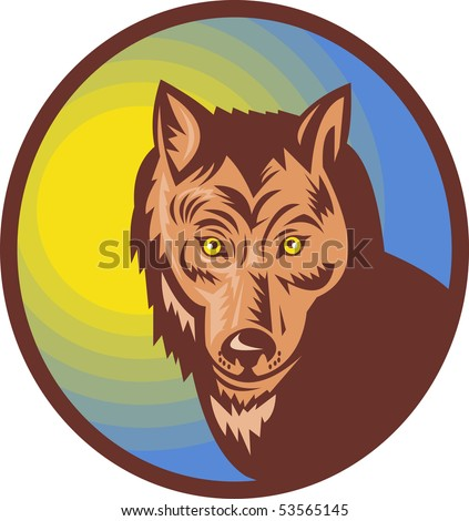 illustration of a Wolf or wild dog looking at the viewer - stock photo