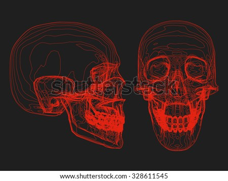 Illustration of abstract skull with red stripes. X-rays from both sides. - stock photo
