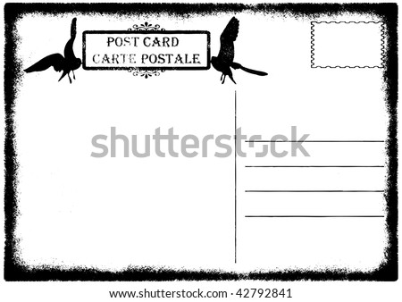illustration of blank old grunge postcard with seagulls