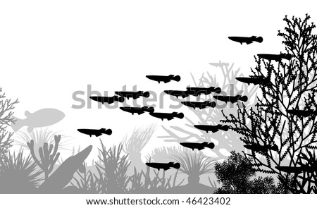 Illustration of coral and fish silhouettes - stock photo
