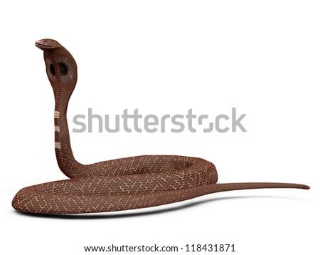 Illustration of 3d cobra snake on white background. - stock photo