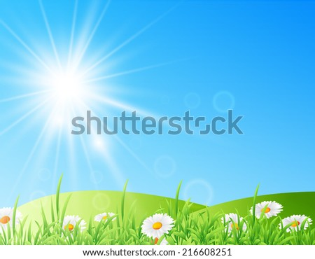 illustration of field of daisies with bright sun