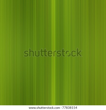 Illustration of  fresh green leaf macro - stock photo