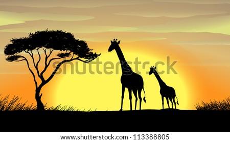 illustration of Giraffe in a beautiful nature - stock photo