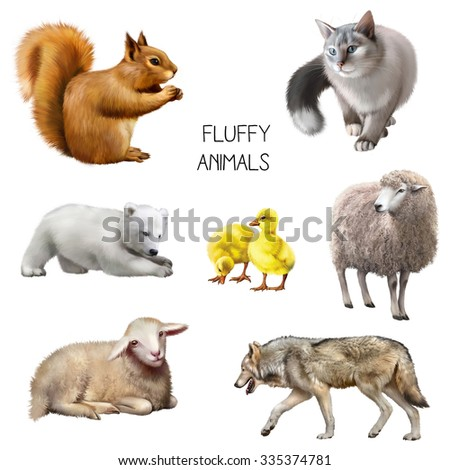 Illustration of gray cat hunting, squirrel eating, sheep and baby lamb, yellow ducklings, walking wolf, baby polar bear playing. isolated on white background - stock photo