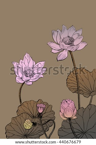 Illustration of lotus flower monochrome.  Graphic raster illustration. Hand painted.