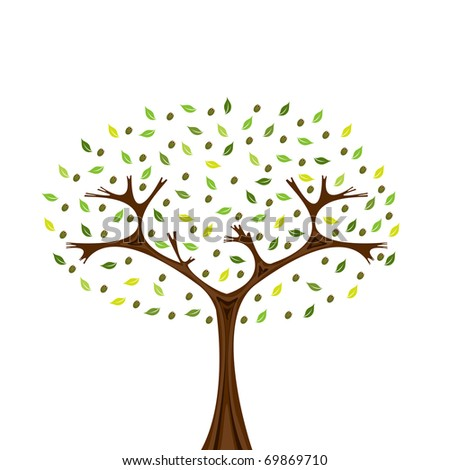 Illustration of olive tree isolated on white
