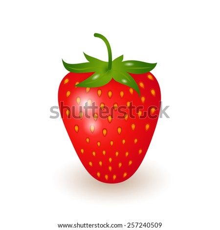 Illustration of one ripe strawberry. Raster version - stock photo