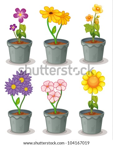 illustration of pot plants - EPS VECTOR format also available in my portfolio.