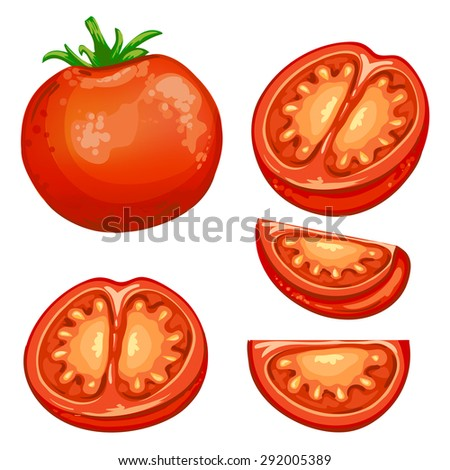 Illustration of red fresh Tomato half and slices  - stock photo