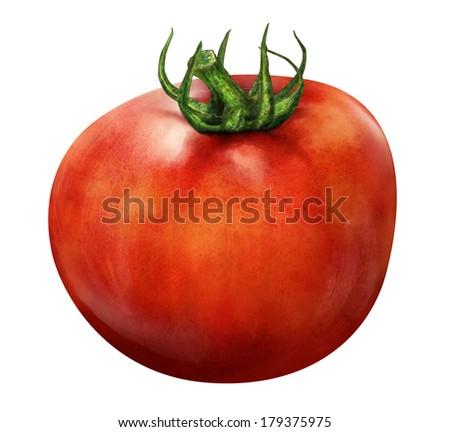 Illustration of red tomato isolated on white background - stock photo