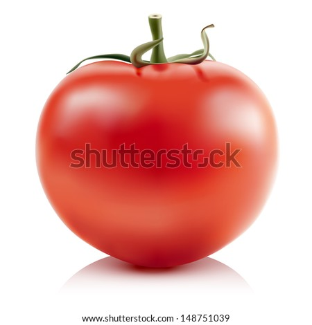 Illustration of red tomatoes isolated on white background.