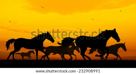 Illustration of running horses silhouettes on sunset background
