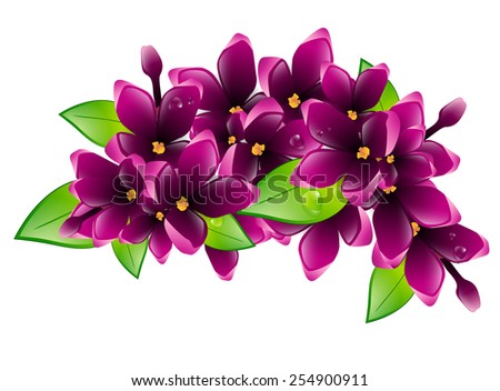 Illustration of Spring Wet Lilac Flower Branch - stock photo