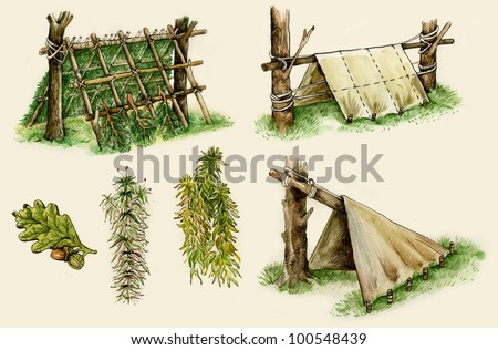 Illustration of survival shelters in the woods
