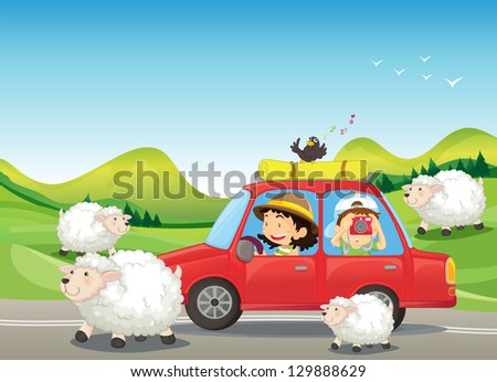 Illustration of the red car and the sheeps at the road