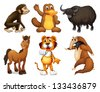 Illustration of the six different kinds of four-legged animals on a white background - stock vector