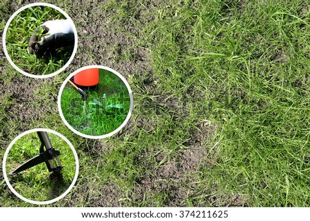 illustration of three methods of removing weeds from the lawn - stock photo