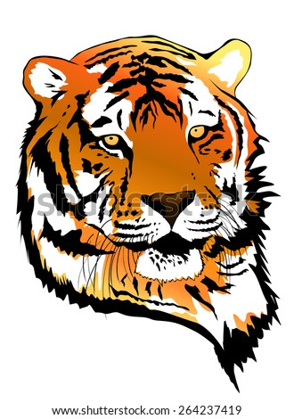 Illustration of Tiger Portrait Over White Background - stock photo