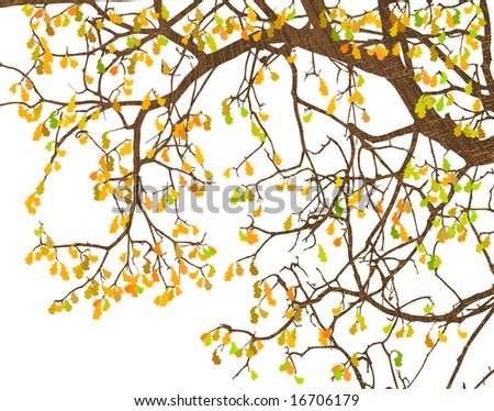 Illustration of tree branches and autumn leaves