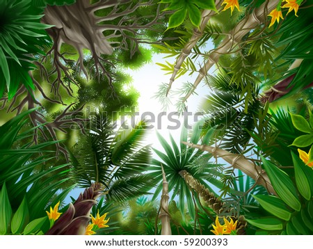Illustration of Tropical forest. - stock photo