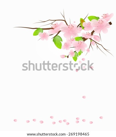 Illustration of twig of tree with light pink blossom background
