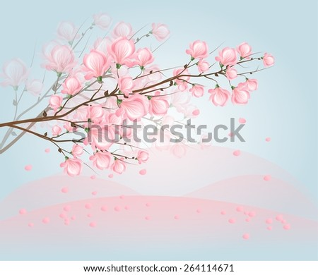 Illustration of twig of tree with light pink blossom of magnolia with light blue background