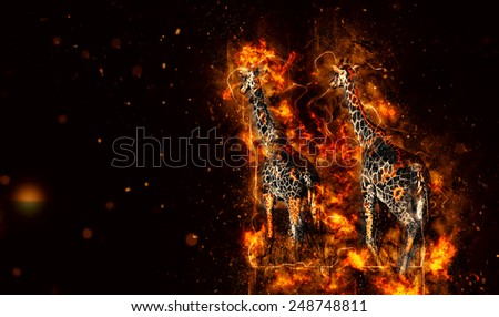 Illustration of two Giraffes with fire