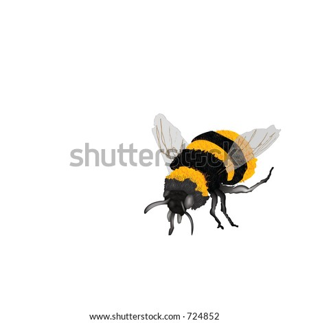 Illustration of yellow and black bumblebee - stock photo