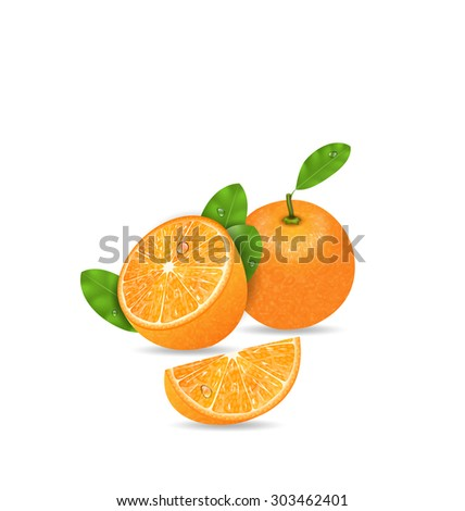 Illustration Set Orange Fruits, Cut and Slices, Ripe Citrus - raster - stock photo