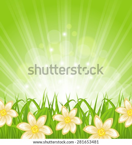 Illustration spring background with green grass and flowers - raster - stock photo