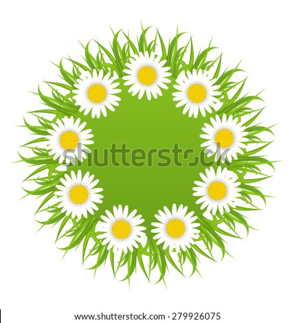 Illustration spring freshness round card with grass and camomiles flowers - raster - stock photo