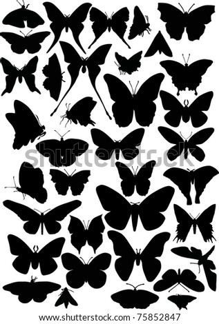 illustration with butterfly silhouettes collection isolated on white background - stock photo