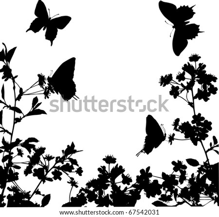 illustration with cherry tree flowers and butterflies silhouette on white background - stock photo